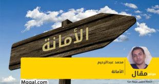 الأمانة، بقلم محمد عبد الرحيم