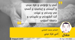 أمي قرّة عيني بقلم : الشاعر محمد الشابي