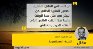 الشدة المستنصرية بقلم : عبد اللطيف محمد
