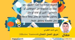 فريق العمل الفعال(Effective Teamwork) بقلم: علي أحمد الهردي