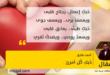 حُبكِ كُل أمرىّ .. بقلم: أحمد طارق