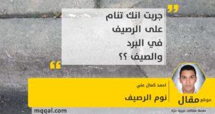 نوم الرصيف بقلم: احمد كمال علي