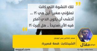 الشيختابت (قصة قصيرة) بقلم: محمد شاذلى يس ابوجبل