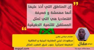 مجهودات تبني المقاربة البيئية و الطاقية النظيفة لامركزيا_ جنوب شرق المغرب كمثال بقلم: هشام فيلالي زهري