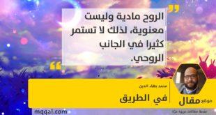 في الطريق بقلم: محمد بهاء الدين