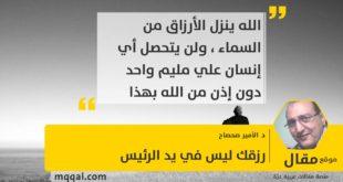رزقك ليس في يد الرئيس بقلم: د. الأمير صحصاح