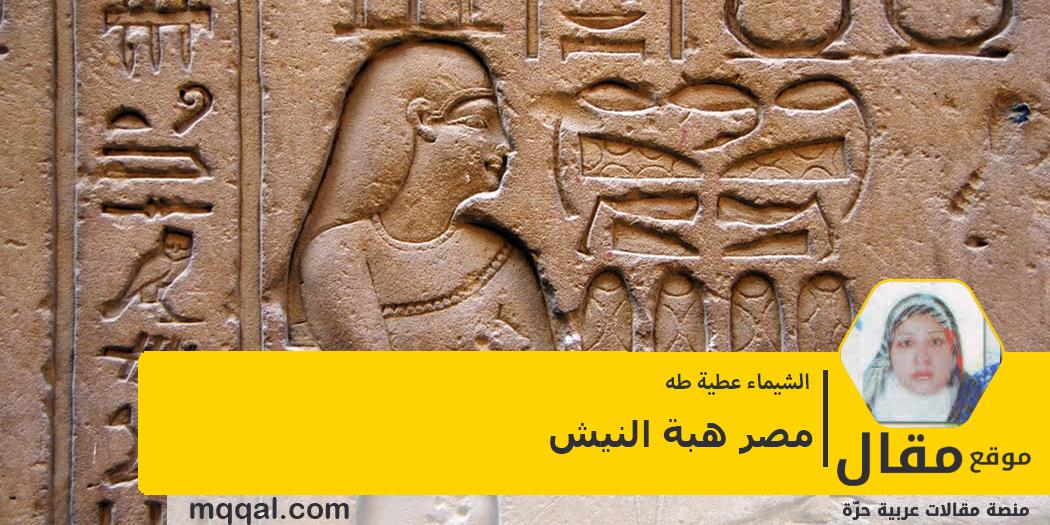 مصر هبة النيش