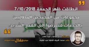 زلزال الجنوب ثورة غضب || بقلم: محمد شريف شناوة عبد اللطيف || موقع مقال
