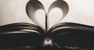 إحساس فوق الحب..بقلم: اشرف محمود حسن..موقع مقال