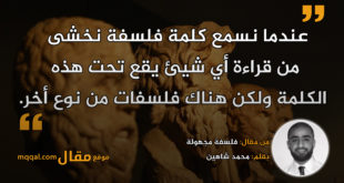 فلسفة مجهولة|| بقلم: محمد شاهين|| موقع مقال