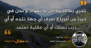 ماذا لو؟ بقلم: دلندي محمد إسلام || موقع مقال