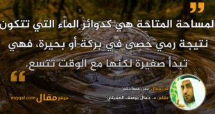 بين مساحتين. بقلم: د. جمال يوسف الهميلي || موقع مقال