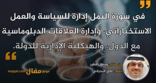 منطق الطير. بقلم: علي البحراني || موقع مقال