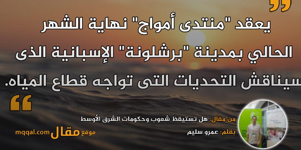 هل تستيقظ شعوب وحكومات الشرق الأوسط من نومها لمواجهة كارثة إنسانية. بقلم: عمرو سليم || موقع مقال