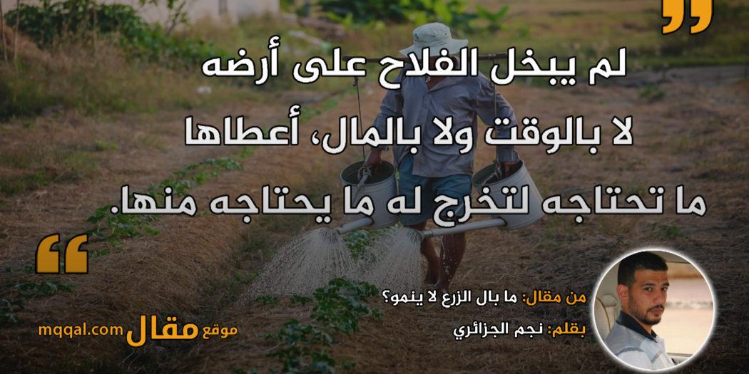 ما بال الزرع لا ينمو؟ بقلم: نجم الجزائري || موقع مقال