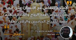 الطريق من سراييفو ج(2)|| بقلم: عمرو سعيد|| موقع مقال
