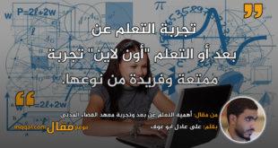 أهمية التعلم عن بعد وتجربة معهد الفضاء المدني|| بقلم: على عادل ابو عوف|| موقع مقال