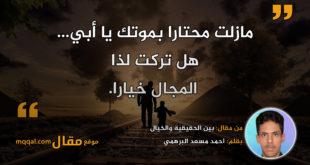 بين الحقيقية والخيال|| بقلم: احمد مسعد البرهمي|| موقع مقال