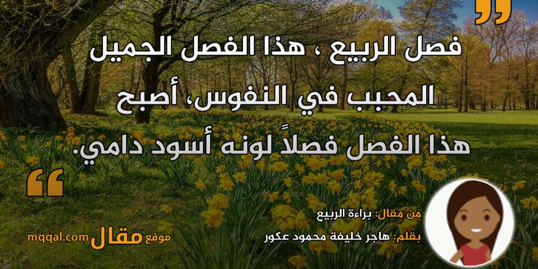 براءة الربيع . بقلم: هاجر خليفة محمود عكور || موقع مقال