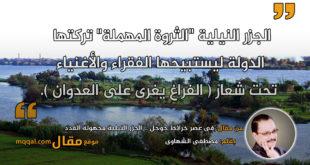 فى عصر خرائط جوجل .. الجزر النيلية مجهولة العدد. بقلم: مصطفى الشهاوى. || موقع مقال