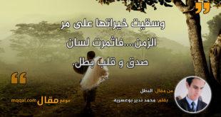 البطل. بقلم: محمد ندير بوعسرية || موقع مقال