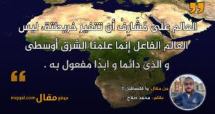 وا فِلَسْطِينُ !! بقلم: محمد صلاح || موقع مقال