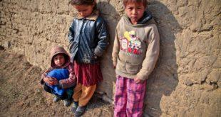 بين زوايا الشوارع.. ضاعت طفولتهم..بقلم: ريما الغضبان .. موقع مقال