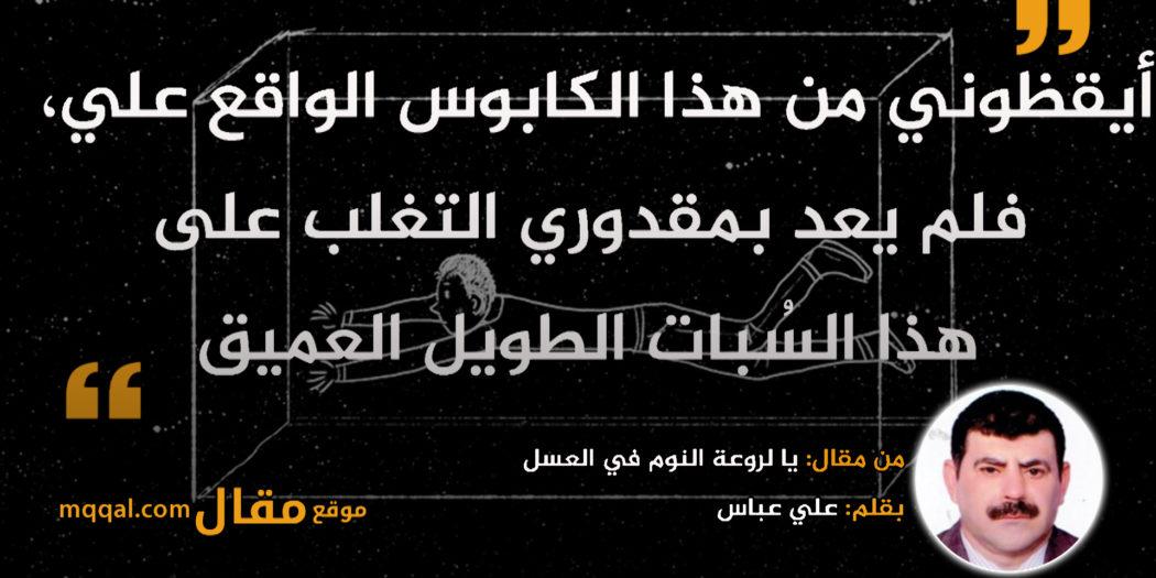 يا لروعة النوم في العسل|| بقلم: علي عباس|| موقع مقال