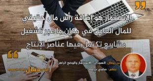 السودان.. الإستثمار والوضع الراهن . بقلم: سامي بريمه || موقع مقال