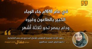 جهود الإدارة المصرية للنهوض بأوضاع المجتمع فى مصر . بقلم: دكتورة ليلى السيد عبدالعزيز || موقع مقال