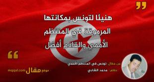 تونس في المنتظم الأممي . بقلم: محمد الشابي || موقع مقال