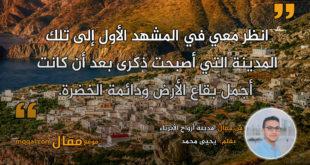 مدينة أرواح الأبرياء . بقلم: يحيى محمد || موقع مقال