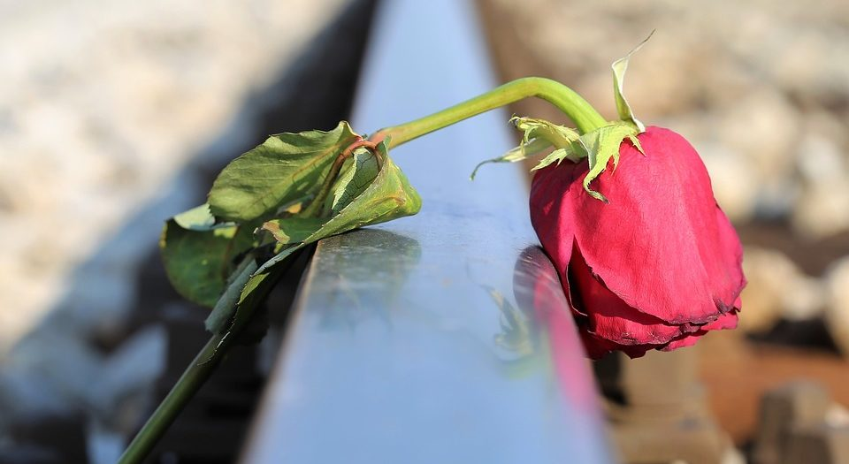 الحب والحزن. بقلم: هاجر حمدي || موقع مقال