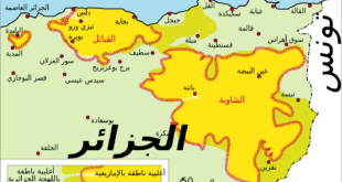 الحراك والتيّار بالجزائر..بقلم:أصيل اكسال.. موقع مقال