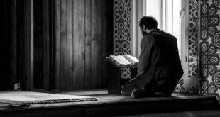 فقه سماع التلاوة... القوالب...بقلم:مصطفى رجب مصطفى أحمد... موقع مقال