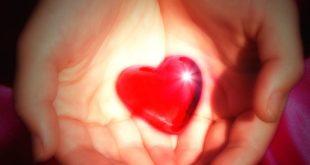 هل الحب معصية وذنب؟...بقلم: محمد الشابي.. موقع مقال