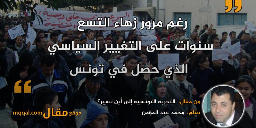 التجربة التونسية إلى أين تسير؟|| بقلم: محمد عبد المؤمن|| موقع مقال
