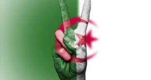 سوسيولوجية الحراك الشعبي في الجزائر وأخطاءه. بقلم: منير عزيب || موقع مقال