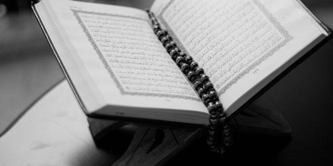 الأدلة التي تحرم الجنة عن صاحب المعصية الواحدة.. بقلم : محمد علي ناصر النوامي.. موقع مقال