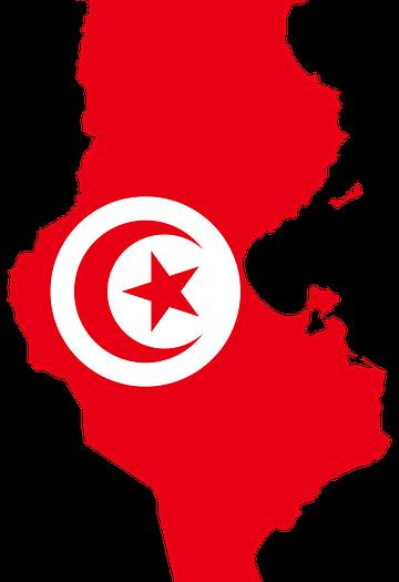 الانتخابات السياسية نتائج غير حاسمة... بقلم: الكاتب صلاح الشتيوي... موقع مقال