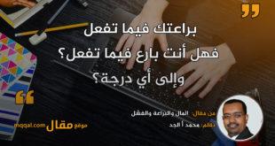 المال والبراعة والفشل|| بقلم: محمد أ الجد|| موقع مقال