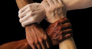 المحقق الأستاذ - يصنع من الشباب المسلم الواعد طاقات فعالة وفكر معتدل.. بقلم: احمد الحياوي.. موقع مقال
