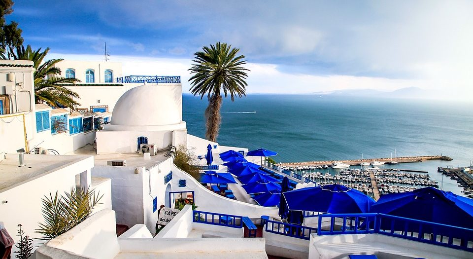هنيئا لتونس بوعي شعبها الجديد - #شعر_حر . بقلم: محمد الشابي || موقع مقال