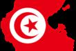 التحدي: الحكومة والمرحلة القادمة [الحجم الأصلي]... بقلم : الكاتب صلاح الشتيوي.. موقع مقال