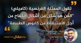 ثورة بلا أدب|| بقلم: زكريا حيدر|| موقع مقال
