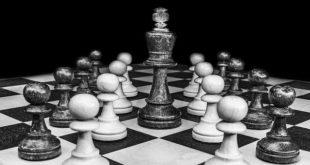 استراتيجية النعامة - #تونس..بقلم: الكاتب صلاح الشتيوي..موقع مقال