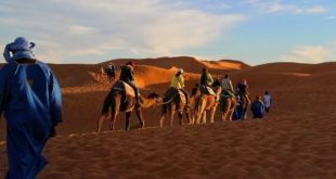 تاريخ قبلية السوالم المغربية الموجودة في منطقة القراية وادي الآجال... بقلم: الدكتور خليفة محمد التليسي... موقع مقال