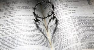 عليسة والحب الممنوع - #قصة... بقلم: الكاتب صلاح الشتيوي... موقع مقال