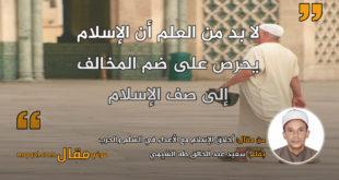 أخلاق الإسلام مع الأعداء في السلم والحرب . بقلم: سعيد عبد الخالق طه الشيمي|| موقع مقال
