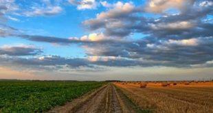 الجنوب سلة غداء ليبيا مشروع القراية وادي الأجال الزراعي...بقلم: الأستاذ عبدالقادر محمد علي ... موقع مقال